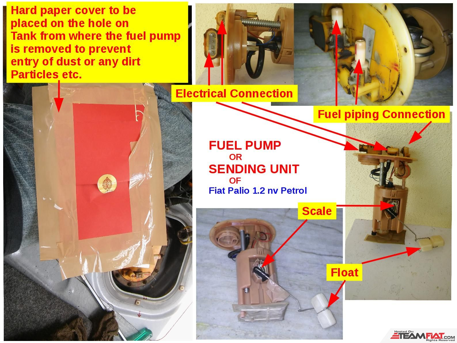 004-Cover & Fuel Pump.jpg
