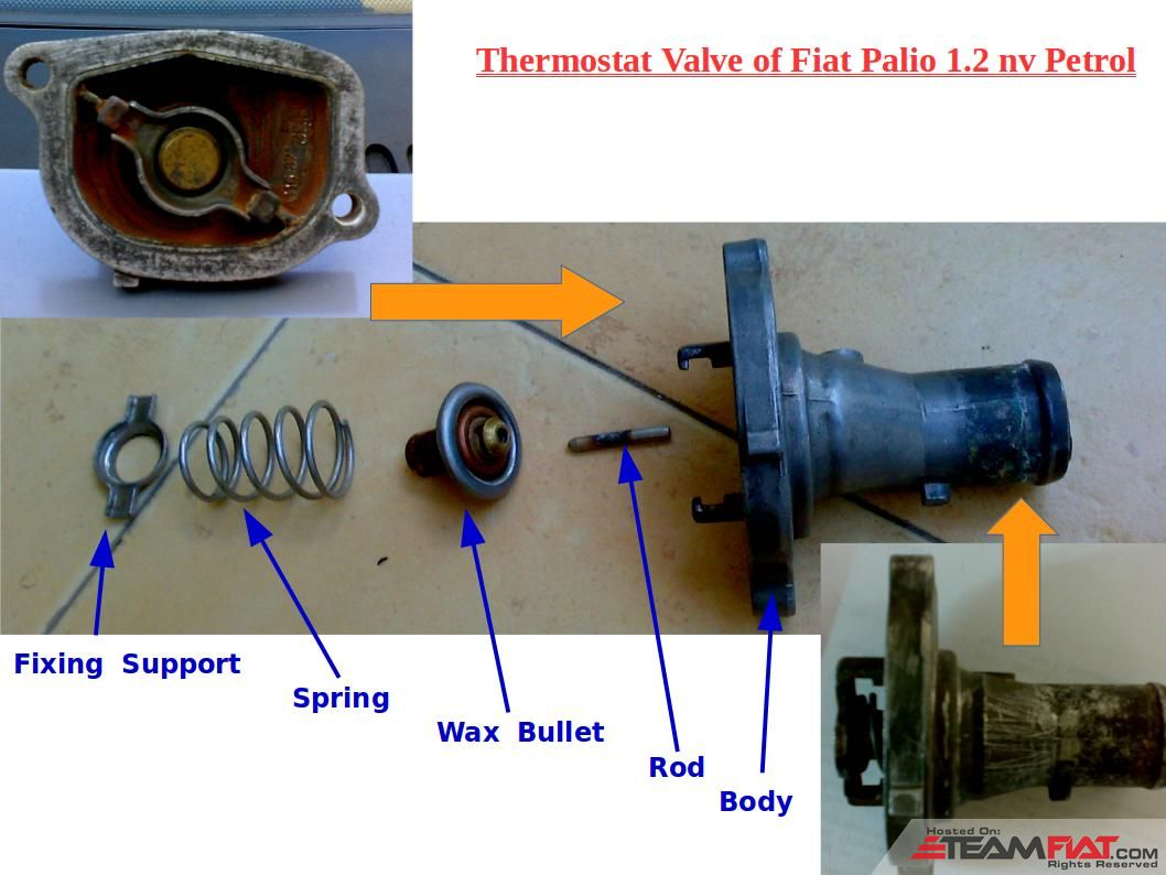2-TV: Thermostat Valve of Fiat Palio 1.2 nv Petrol.jpg