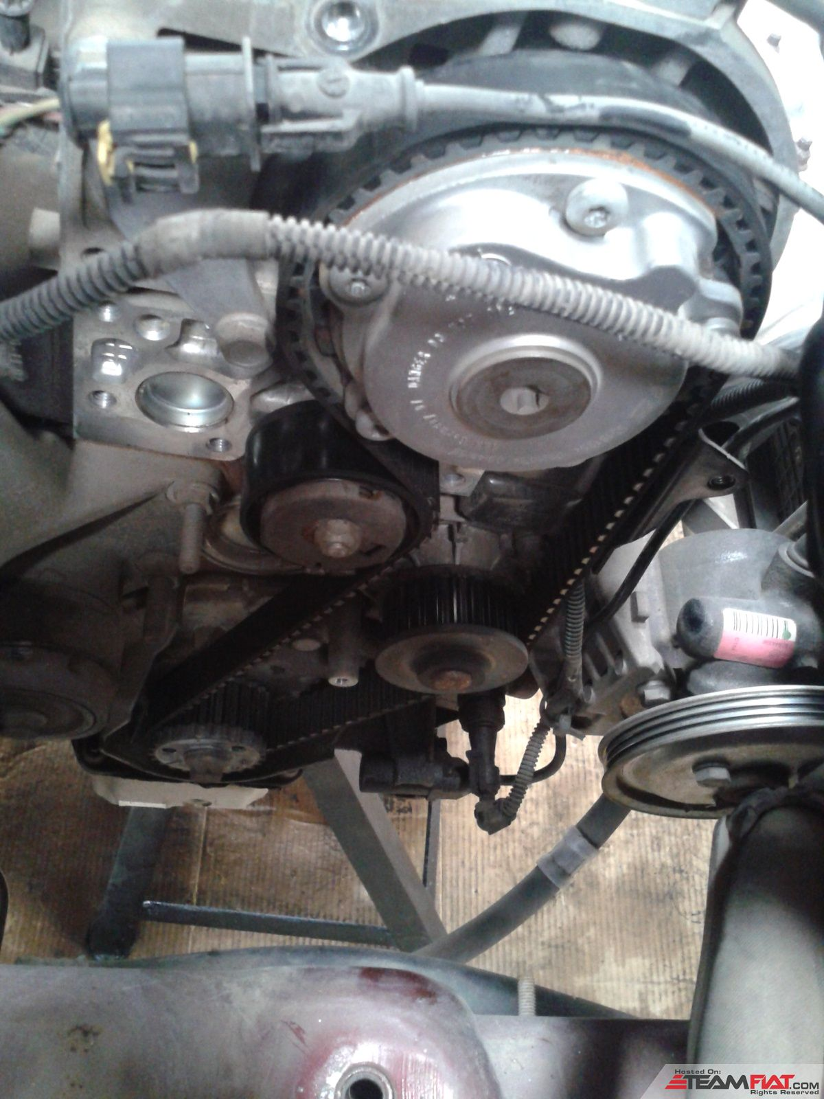 both mountings removed timing belt better view.jpg
