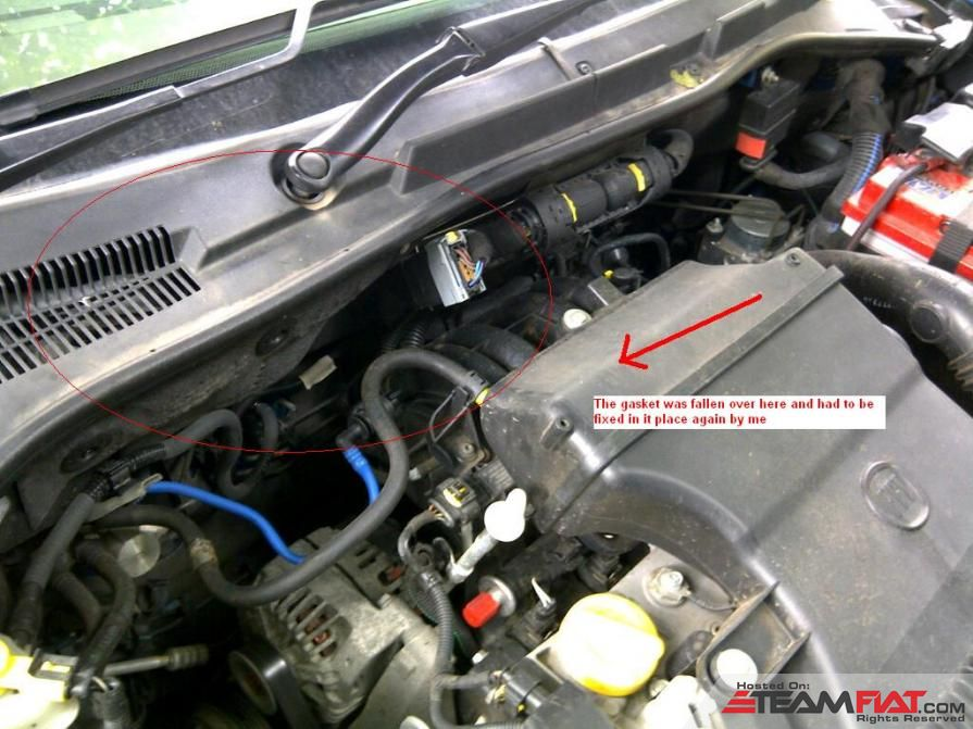 Gasket or beading strip loose in the engine bay.jpg