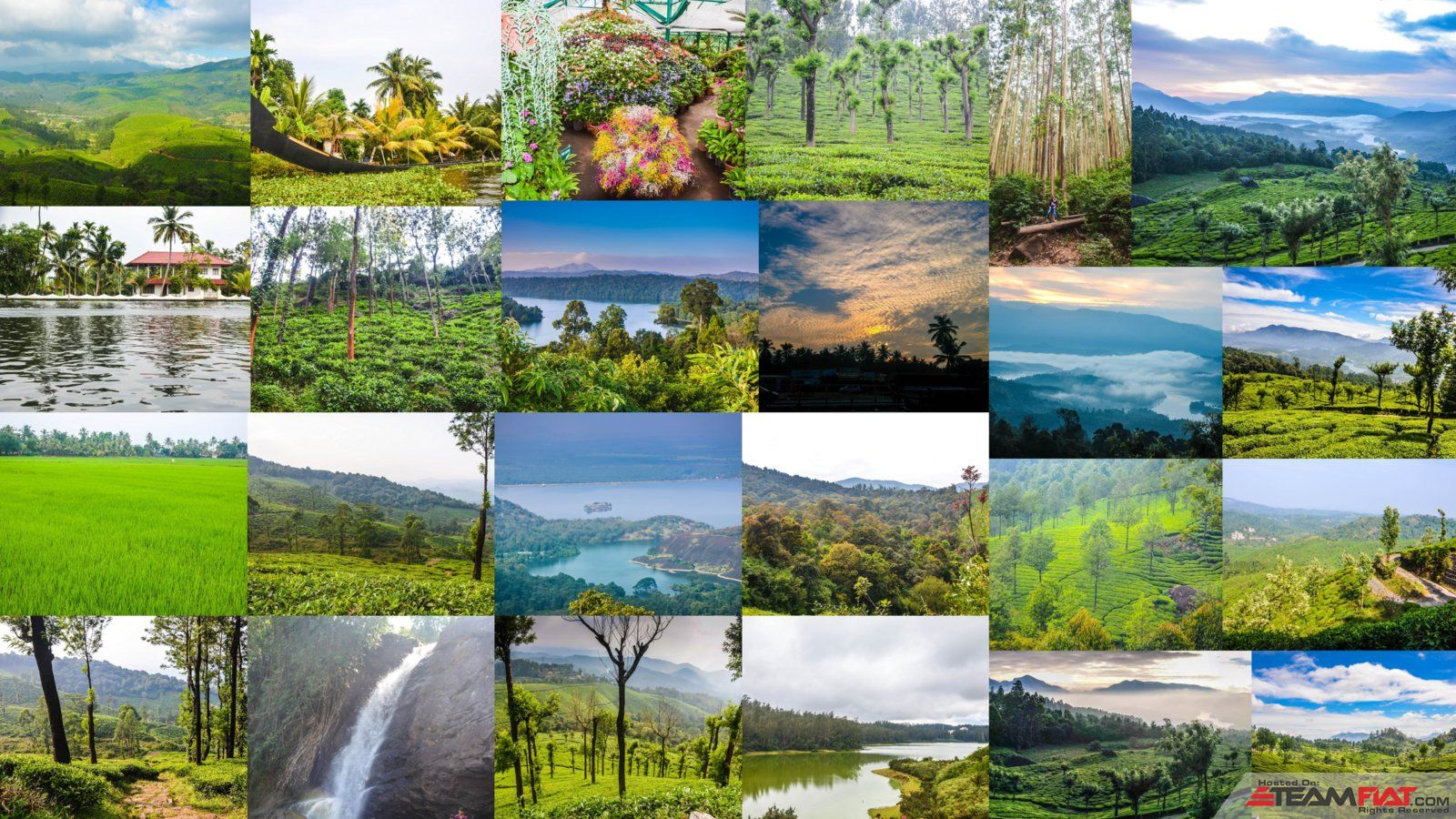 Kerala-Collage-PP.jpg