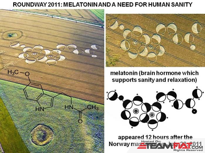 Melatonin's Crop circle.jpg