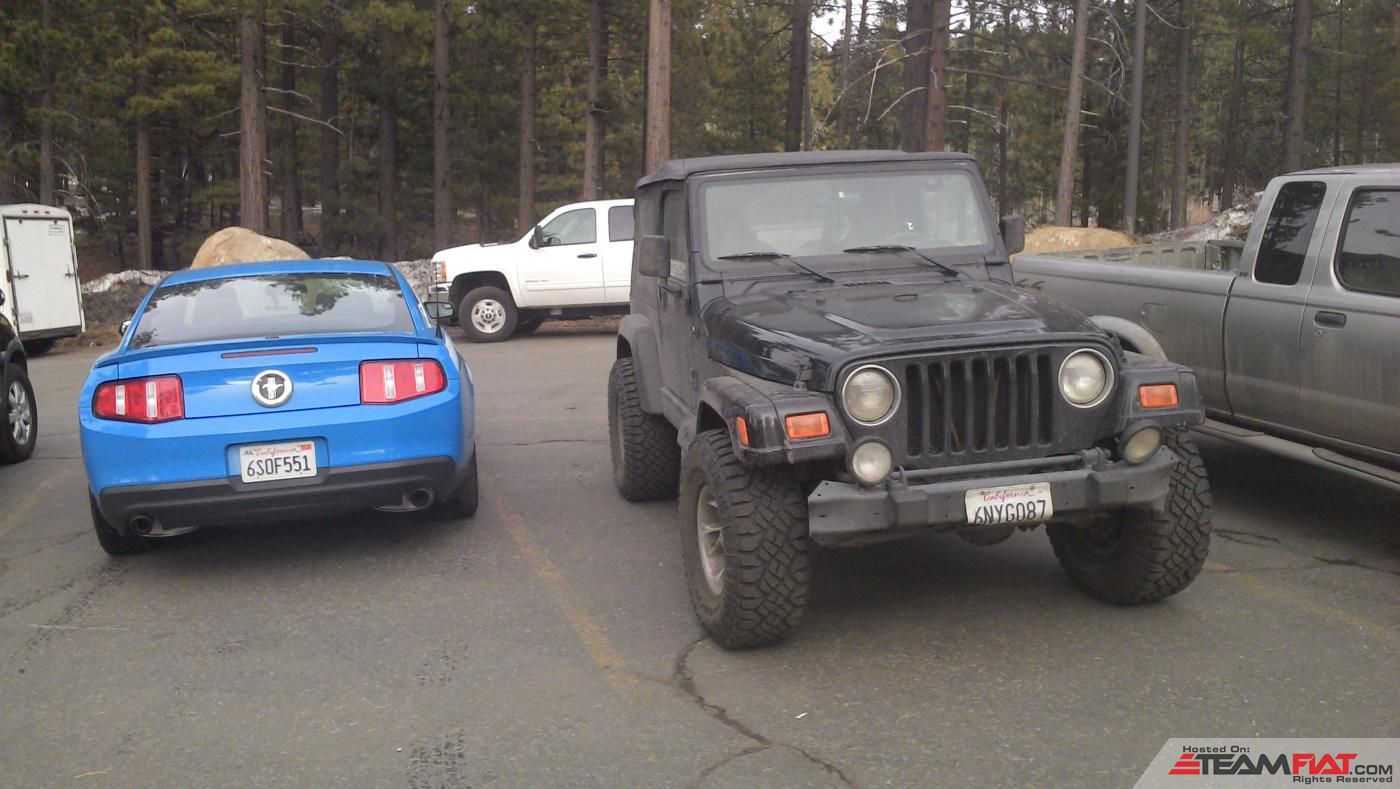 mustang_and_jeep.jpg