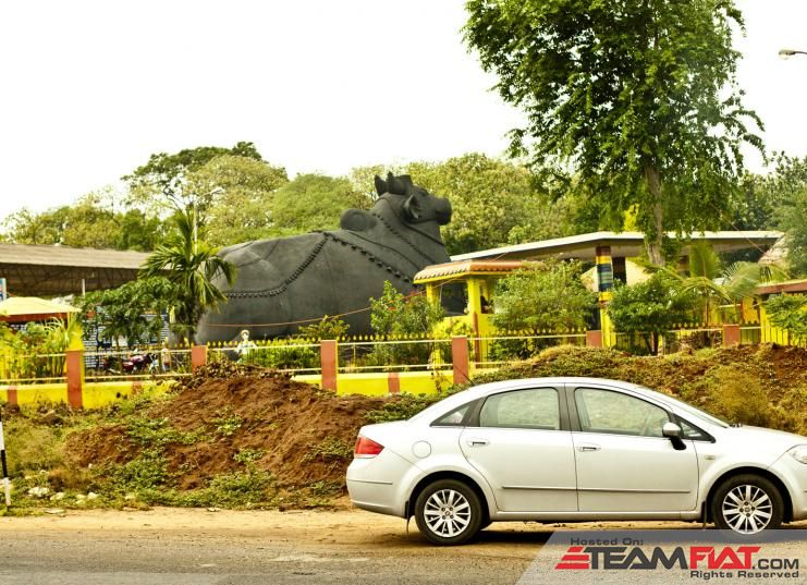 Nandi at Walayar.jpg