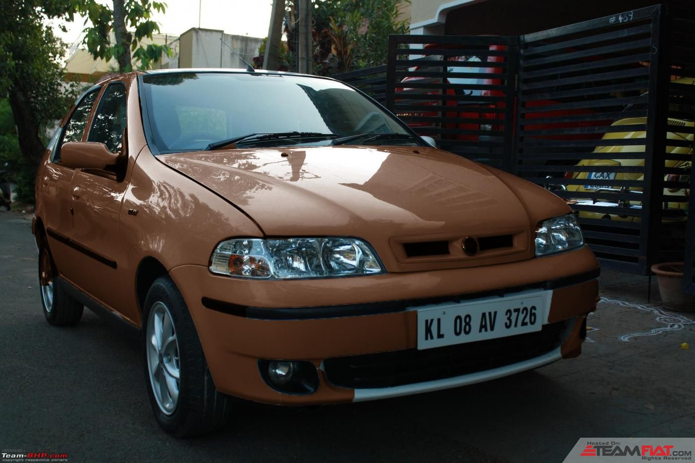 Palio Front Brown.jpg