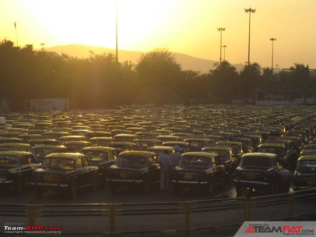 sea of FIAT taxis.jpg
