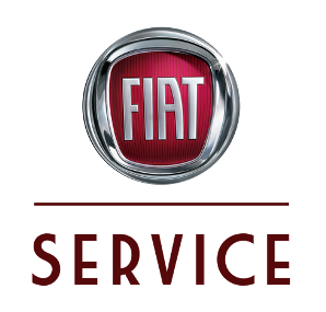 Marvel Fiat TrichyTamilnadu Team Fiat - Fiat service